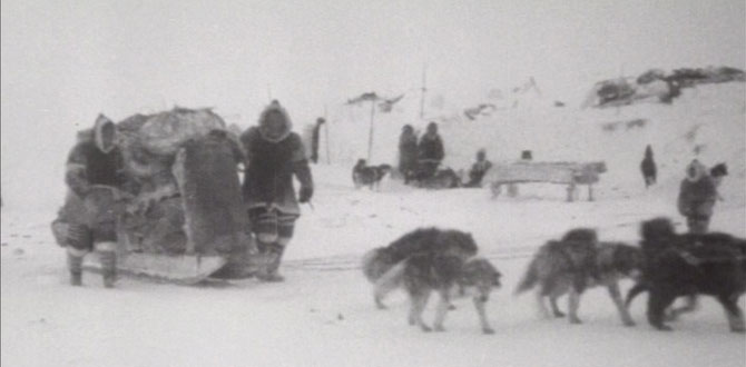 ByDogsledge3web